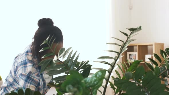 Thumbnail for Happy Woman Cleaning Houseplant at Home 21