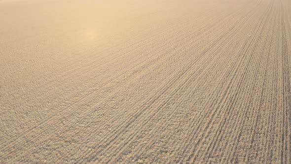 Thumbnail for Aerial Shot of Plowed Empty Field During Winter on Sunny Day