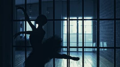 Silhouette of a Ballerina in a Tutu