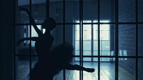 Silhouette of a Ballerina in a Tutu