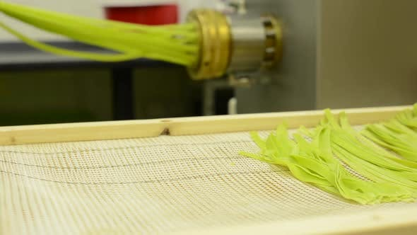 Production of Pasta (Spaghetti) - Machine Produce Pasta - Ready for Drying