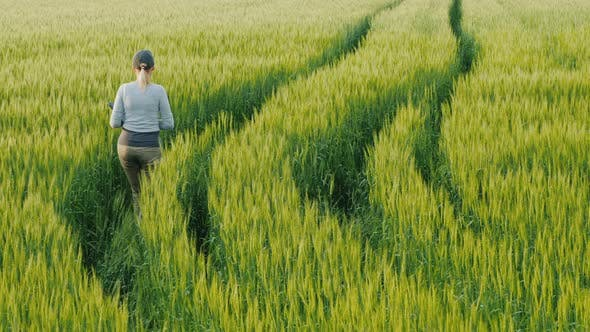 Thumbnail for Young Woman Farmer Walking in a Field of Green Wheat