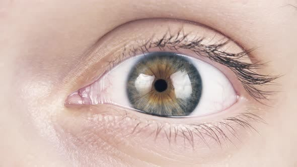 Thumbnail for The Human Eye Opens and Blinks Close-up