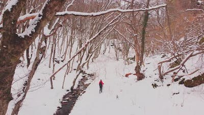 Woman Hikes In Winter In Forest Alone