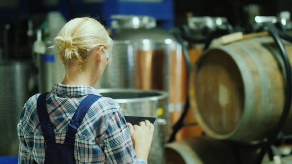 Thumbnail for Back View of A Woman Uses a Tablet in a Winery Workshop, in the Background Are Wooden Barrels