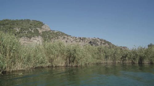 Reeds in The River And The Tombs of The Kings 4K
