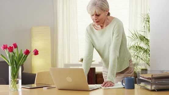 Thumbnail for Beautiful mature woman laptop computer