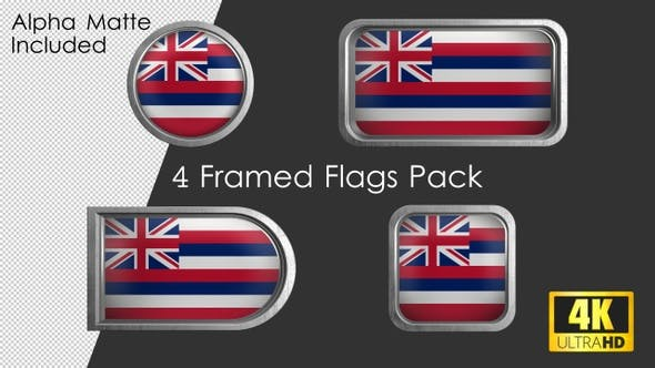 Hawaii State Flag Framed