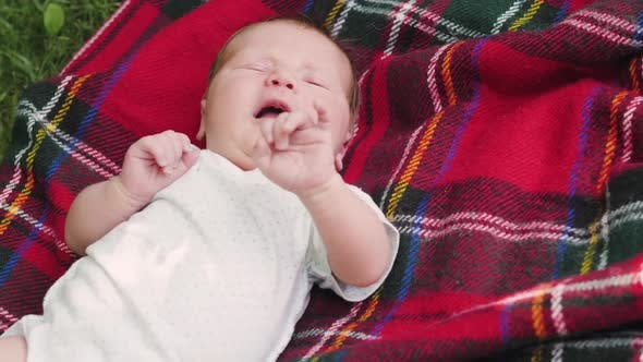 Thumbnail for Baby Feet on a Plaid Cage. Child Outdoors on a Plaid