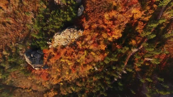 Aerial fly over Belogradchik forest in autumn, Bulgaria