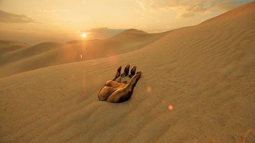 Lost Golden Hand and Desert