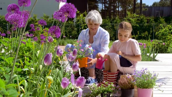 Thumbnail for Grandmother and Girl Planting Flowers at Garden