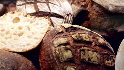 Many Different Types of Bread