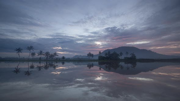 Thumbnail for Time lapse dawn to day transition over the coconut trees