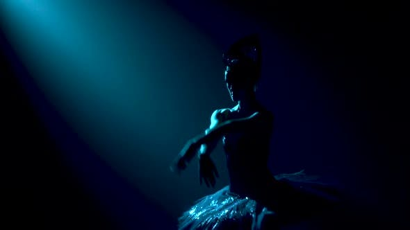 Thumbnail for Silhouette of a Graceful Ballerina in a Chic Image of a Black Swan. Classic Ballet Pas. Shot in a
