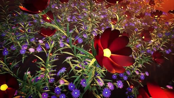 Thumbnail for Flower Field Loop #02 4k