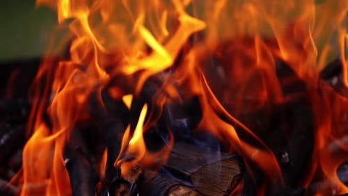Wood in fire for barbeque