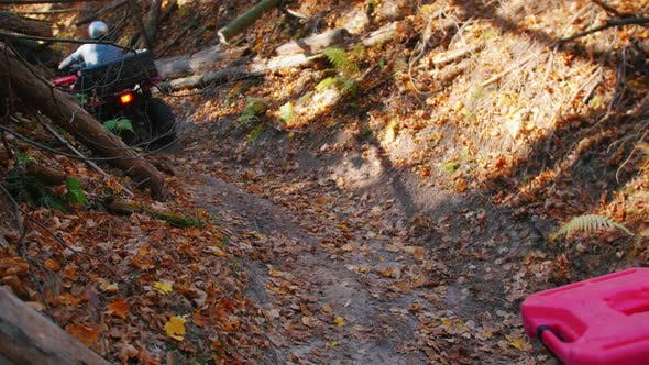 Thumbnail for People Riding ATVs in the Woods on the Path - Autumn Season