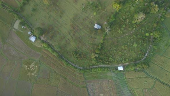 Lockdown View on  Landscape