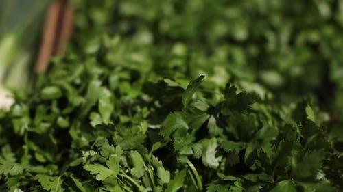 Fresh Organic Leafy Greens Offered for Sale