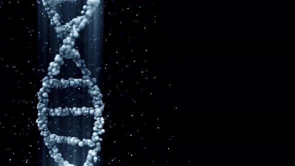 Thumbnail for Blue DNA Molecule Model