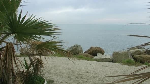 Thumbnail for Recreation on Beautiful Sandy Beach With Stones and Palms. Meditation at Seaside