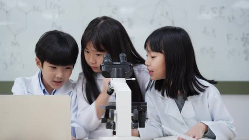 Children studying science in classroom at school.