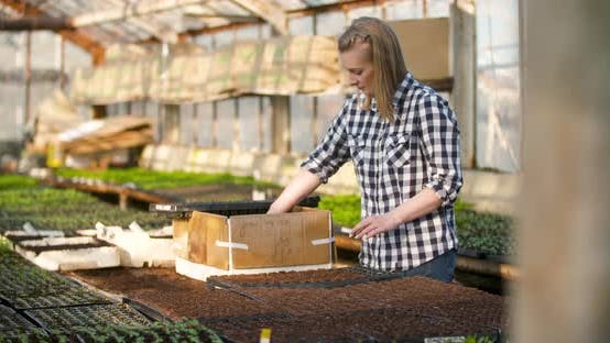 Thumbnail for Young Female Botanist Examining Potted Plant