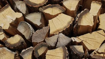 Oak Firewood is Dried in a Woodpile