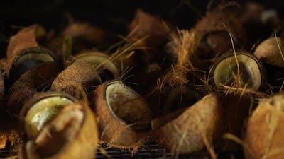 Closeup Coconut Halfs Drying