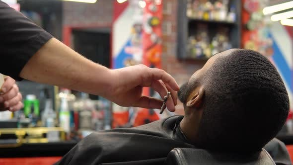The Hairdresser Cuts with Scissors and Combs the Client's Beard with a Comb