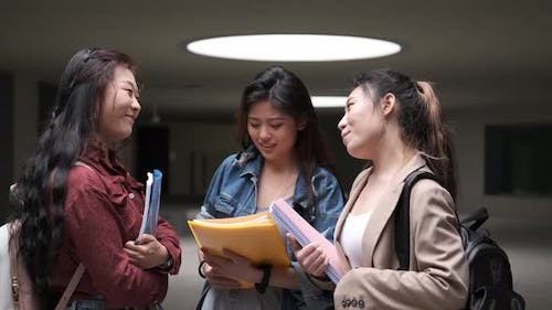 Portrait of a group of Asian girls enjoying time together and talking in college campus.