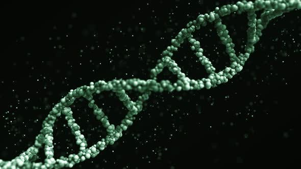 Cover Image for Green DNA Molecule Model