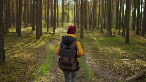 Slow Motion Young Black African Woman Hiking in Forest in Autumn