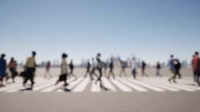 Zebra Crowd of People Deep of Focus