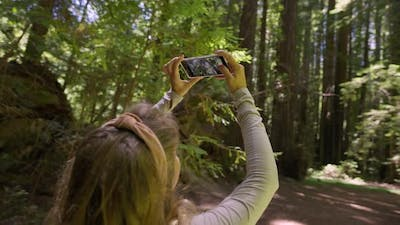 Taking Picture In Forest