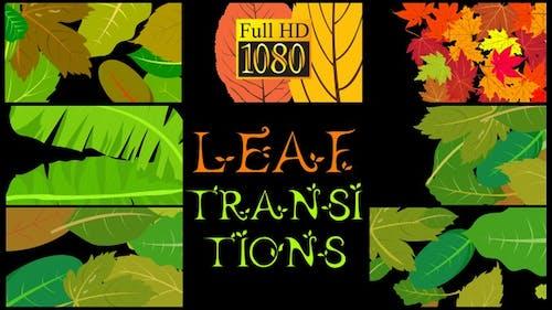 Leaf Transitions
