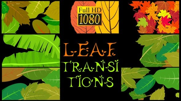 Thumbnail for Leaf Transitions