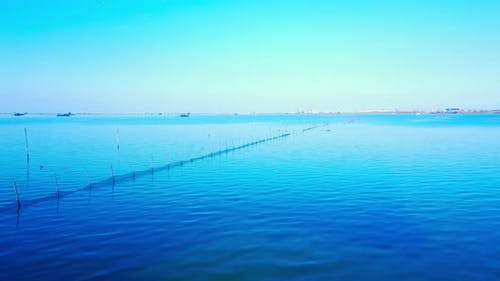 Bright Lagoon with Nets for Industrial Shellfish Farming
