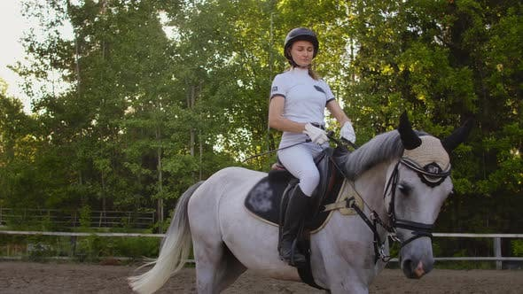 Thumbnail for Perfect Horseback Riding. Slow Motion