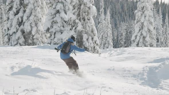 Snow Boarder Moving Down Terrain By Trees