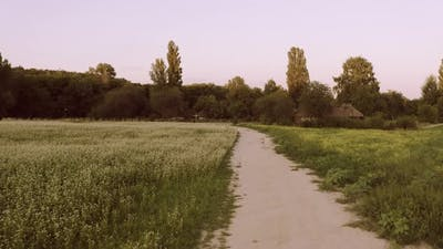 Moving Forward on Countryside Trail