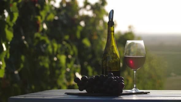Winemakers Treasure
