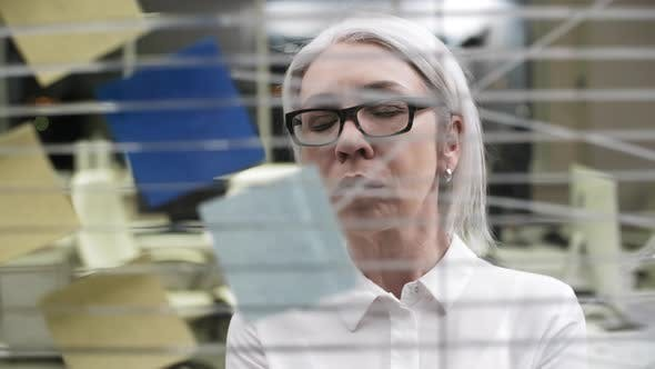 Thumbnail for Grey-Haired Caucasian Business Lady Working Late in Empty Office
