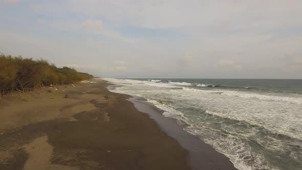 Sandy Beach Near the Ocean
