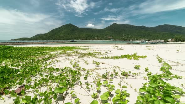 Cover Image for Paradise white sand beach Malibu in Koh Phangan island, Suratthani, Thailand