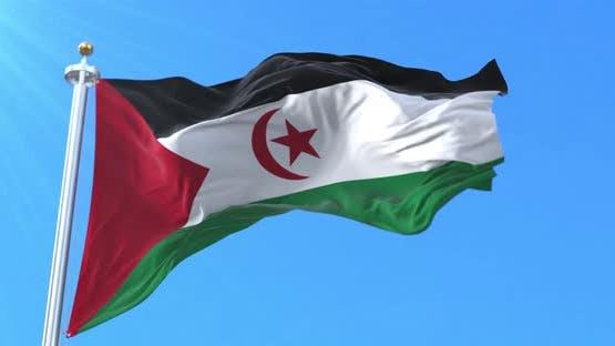 Sahrawi Arab Democratic Republic Flag