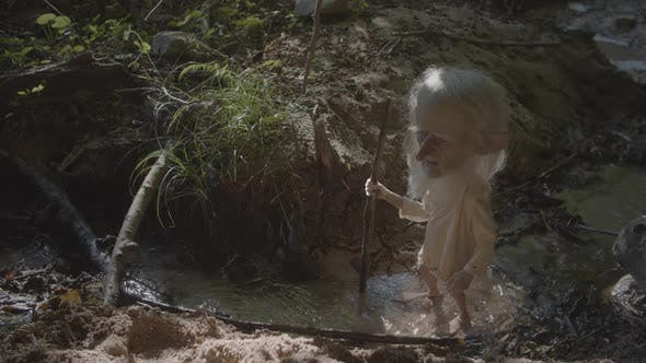 Thumbnail for Elf In The Forest