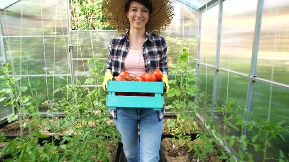 Thumbnail for Concept of Hobbies and Country Life. Beautiful Woman Holding Box of Fresh Tomatoes