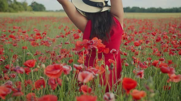 Girl in a Red Dress and Hat Among the Poppies